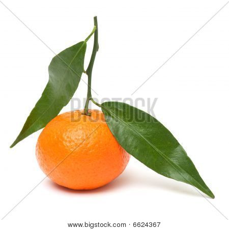 Mandarin with leaves and slices of mandarin isolated on white