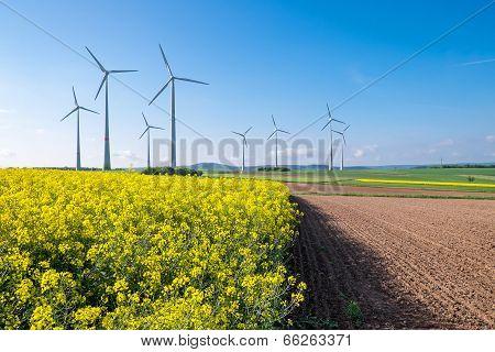 Rural landscape with windwheels