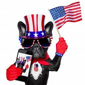 american selfie french bulldog taking a selfie and waving with usa flag poster