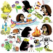 set with mole and hedgehog exploring world of insects,isolated cartoon images for little kids poster