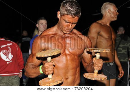 Male Bodybuilding Doing Dumbbell Bicep Curls