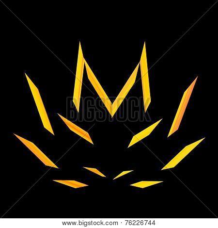 Flame isolated on black background. Blazing bonfire at night. Hemp or marijuana leaf.