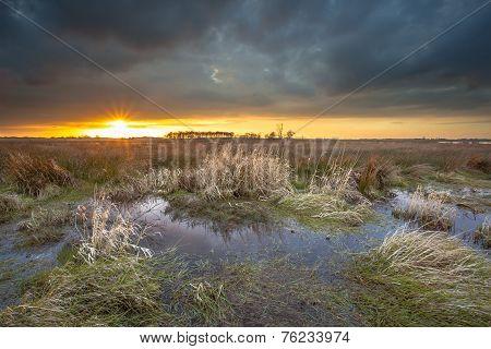 Threatening Dark Sky Over Swamp Area During Sunset