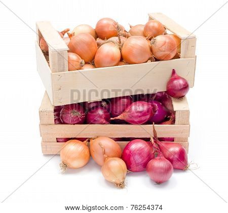 Crates With Onions
