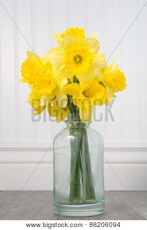 Daffodils In A Bottle On A White Beadboard Background