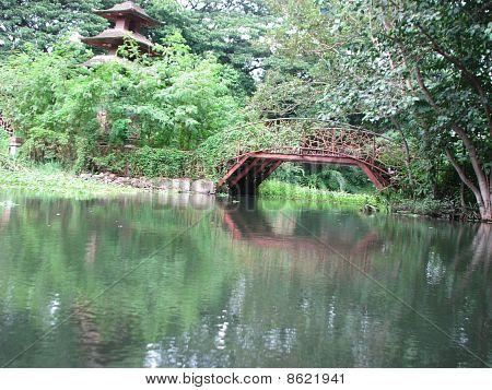Lake & Bridge Veiw