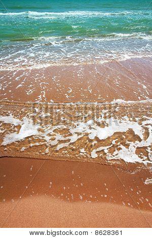 Clear Water Beach