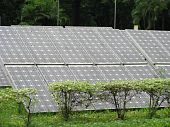 A solar energy plant, with greenary, trees, surrounding it. poster