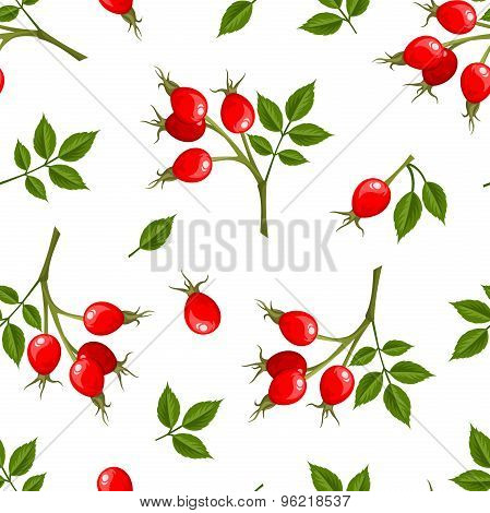 Vector seamless pattern with rosehip berries. Vector illustration.