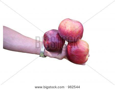 Hand Full Of Apples