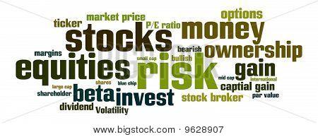 Equities Stocks Risk