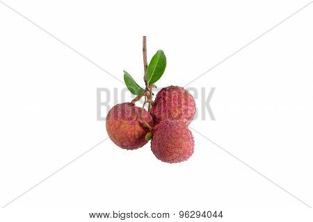 lychee or litchi