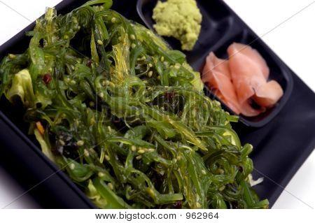 Nahrung - Algen-Salat