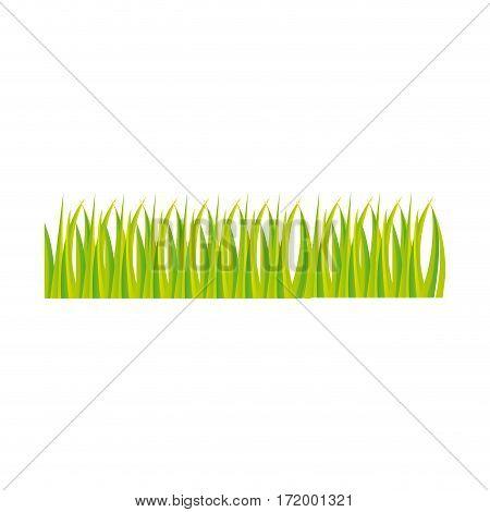 green grass ornament icon design vector illustration