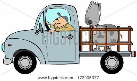 Illustration of a man driving a truck with a large dog in the back.