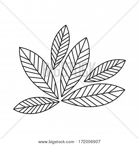 silhouette leaves with ramifications icon vector illustration