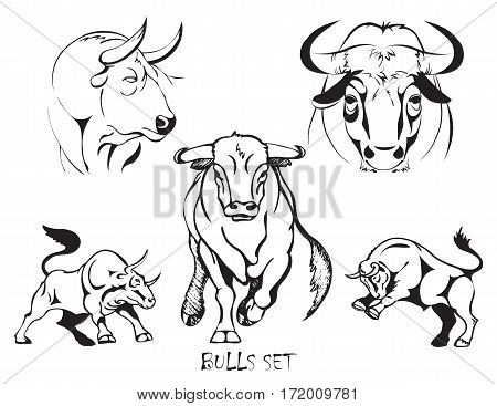 Bulls set of stylized black and white vector illustration