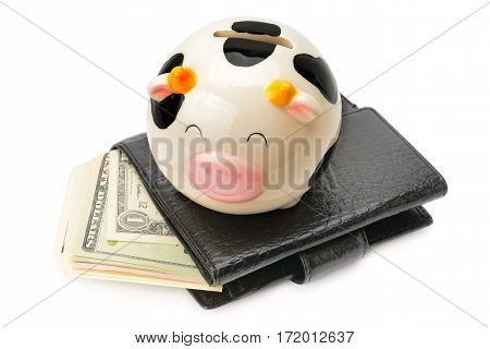 Wallet with dollars and piggy bank isolated on white background