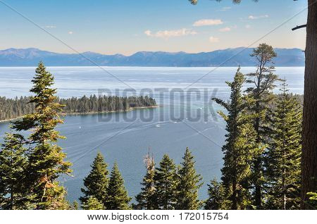 View of Lake Tahoe and its forests, California