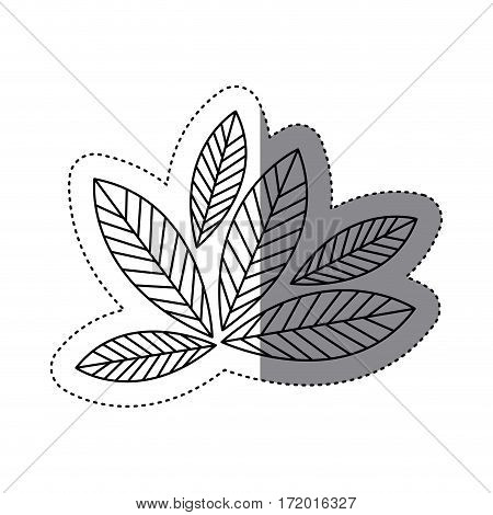sticker silhouette leaves with ramifications icon vector illustration