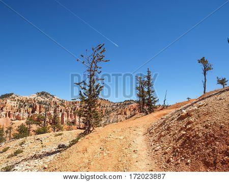The Bryce Canyon National Park Utah, United States.