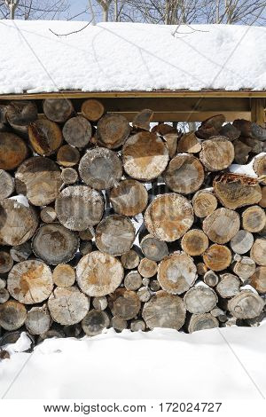 Stack of firewood in bright winter day with a lot of snow around.