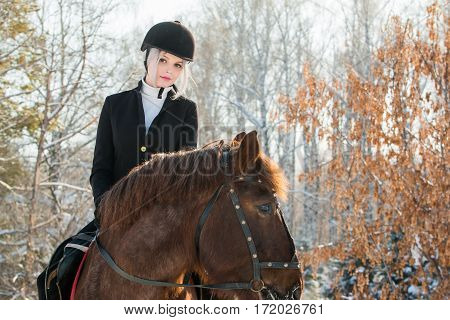 Young beautiful girl jockey riding a horse in a winter forest