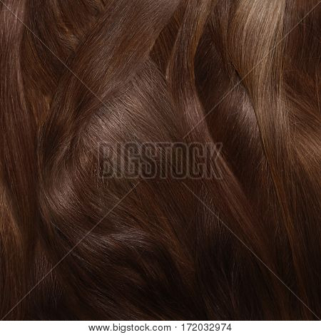 The view of woman shine brown hair