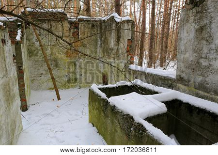 old broken laboratory house in winter forest