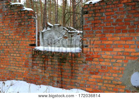 old broken building in forest in winter time