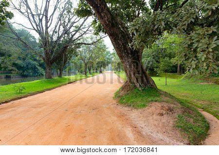 Rut road in park near Sigiriya Lion Castle, Srilanka