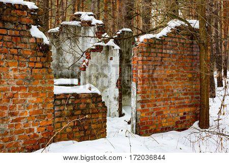 Old broken building in winter forest