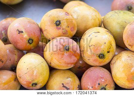 pile of fresh mango fruits closeup - mangoes background