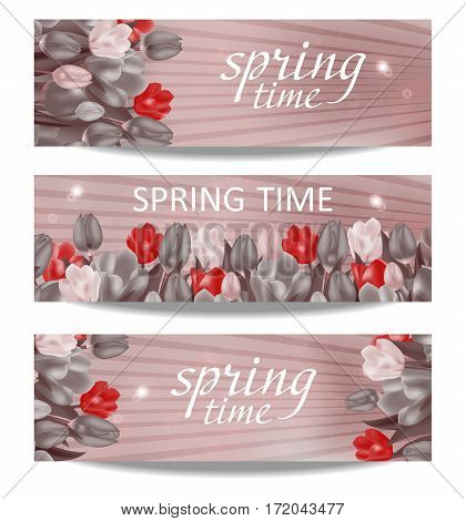 A set of spring banners. Stylized background with tulips and a bright red flower. Vector Illustration.