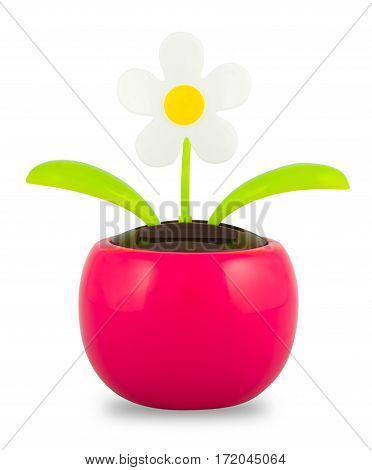 Plastic Solar Powered Dancing Flower on White Background