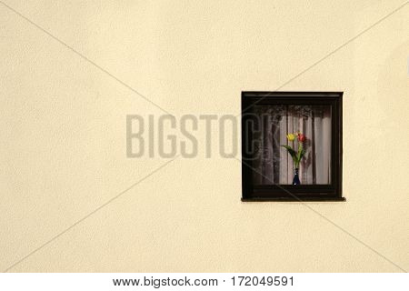 The facade of a coarse plastered residential building with a small window in which a flower vase stands.