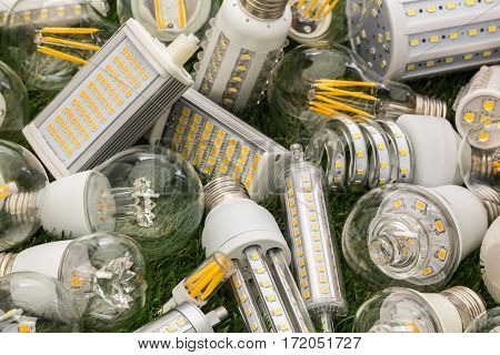 big family of eco LED bulbs of various types on the green grass