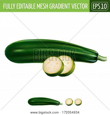 Zucchini isolated realistic illustration on white background.