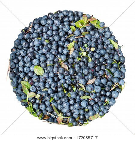Bilberry. Organic blueberry background with leaves. Fresh raw berries isolated on white background. Wild berry.