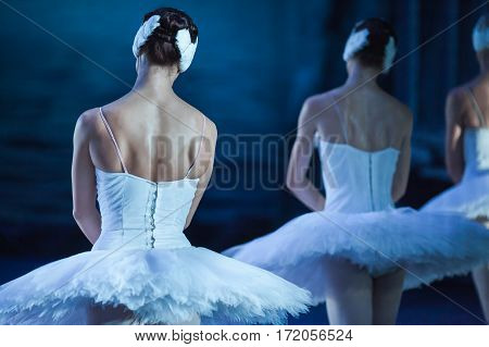 Ballet swan lake. Ballerinas in the movement. Feet of ballerinas close up.