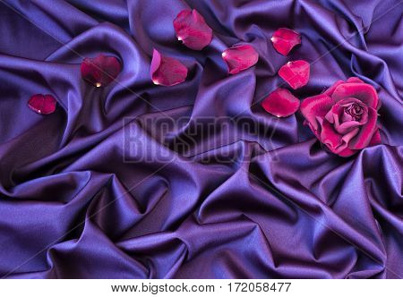 roses petal on soft silk fabric , romance and love card concept