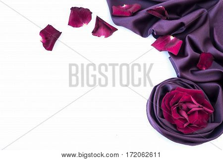 roses petal on soft violet silk fabric , white background