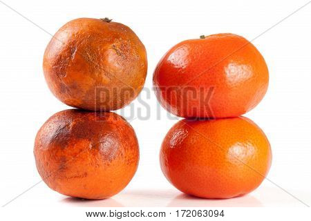 fresh and damaged tangerine isolated on white background.