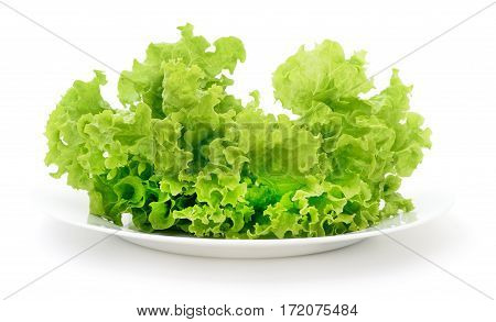 Fresh vegetable salad in glass bowl isolated on white background.