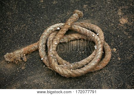 marine rope. marine rope for tying up boats to docks. hemp rope.
