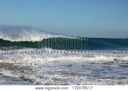 A massive wave breaks and goes unridden at Newcastle Beach - NSW AUstralia. The iconic chain of the