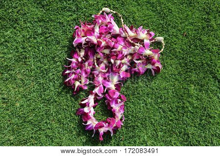Hawaiian lei. two Hawaiian lei's on green grass in heart shaped designs