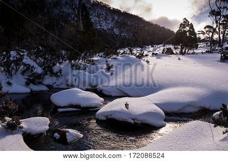 View of Mt. Field National Park covered in snow in winter in Tasmania, Australia
