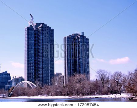Complex of buildings Humber Bay on a shore of the Lake Ontario in Toronto Canada February 16 2017