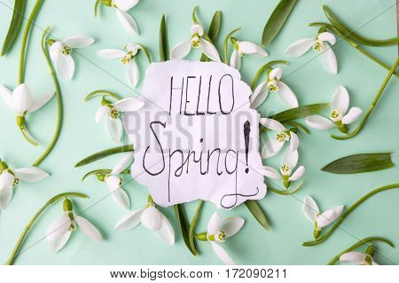 Hello Spring Calligraphy Note With Snowdrops